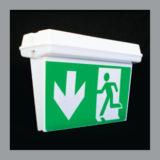 WBH-LED/DS Exit